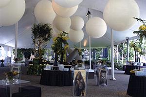 Park Place Terrace & South Lawn 250-4,000 guests  Rental Info