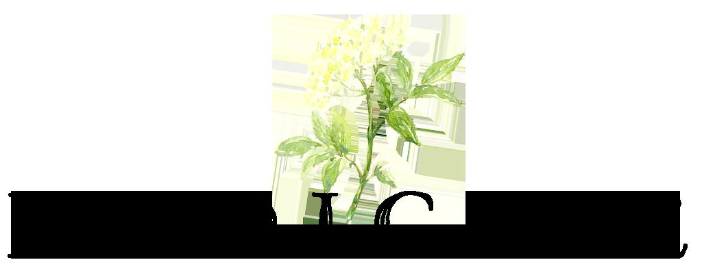 elder-farm-medicine.png