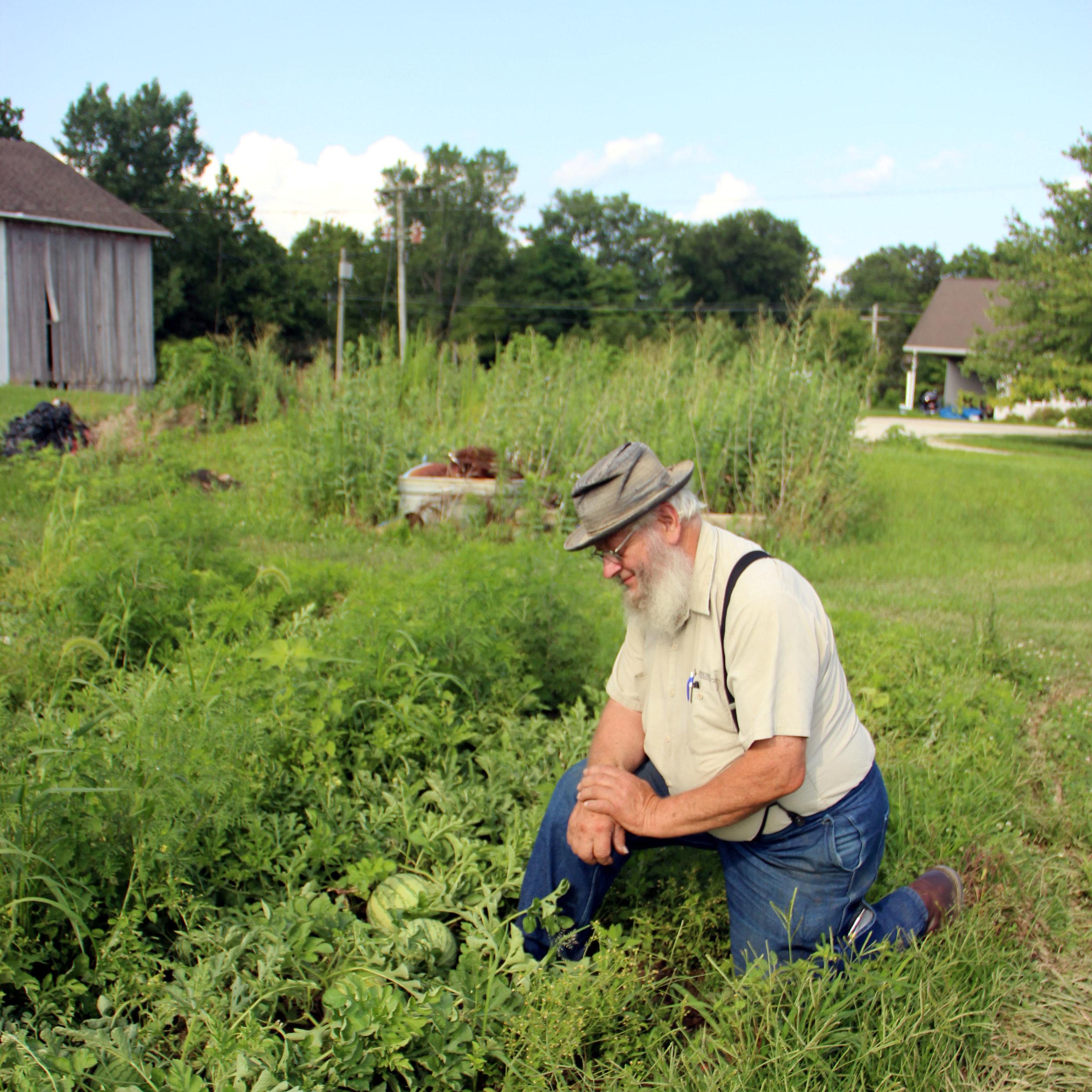 A man and his garden