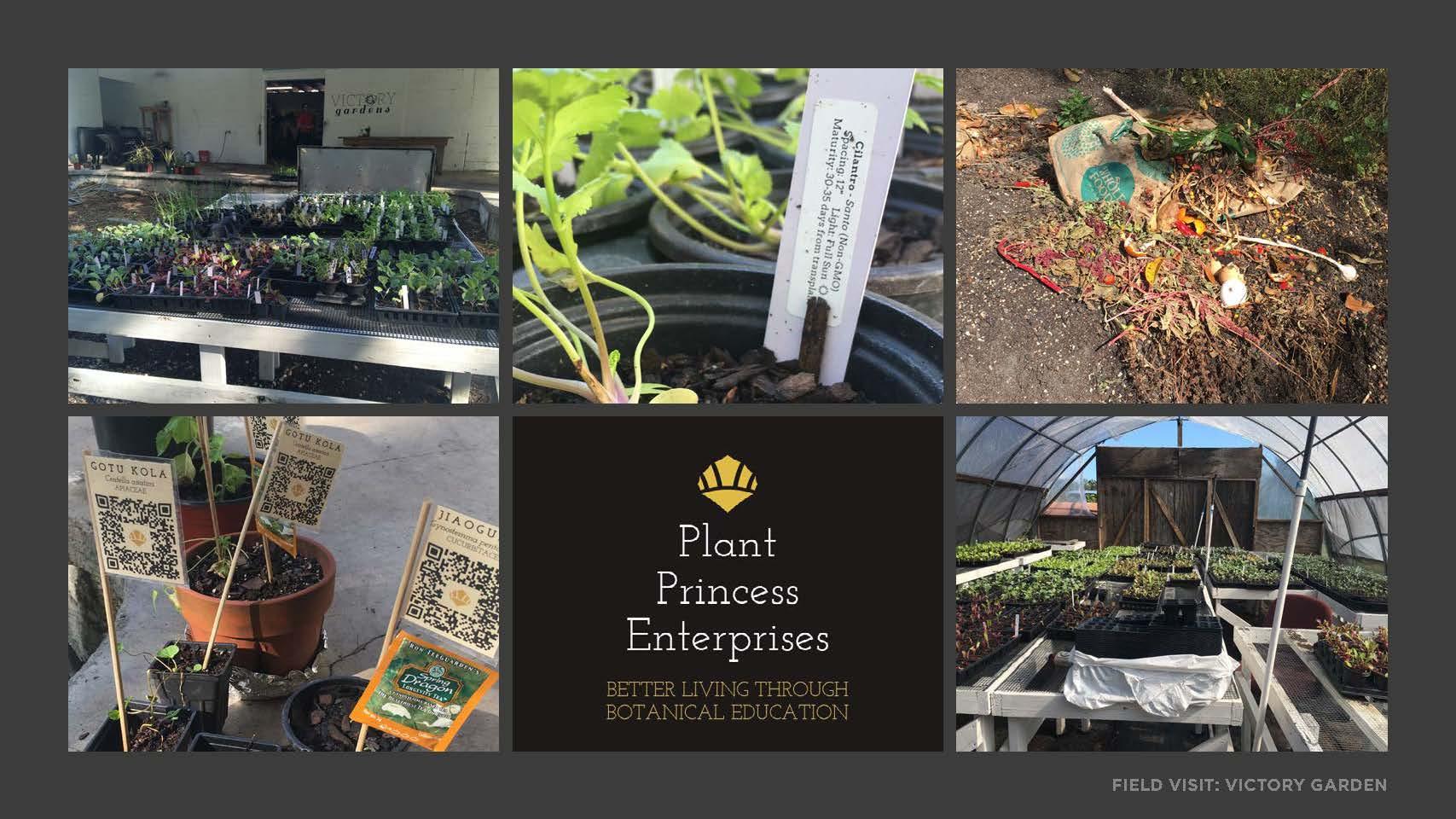 Food Transprancy Final Presentation_Page_036.jpg