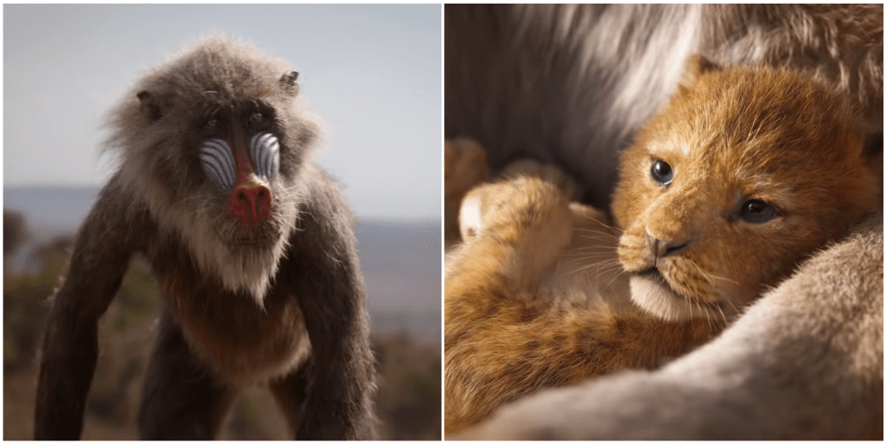Rafiki and Simba 2019.png
