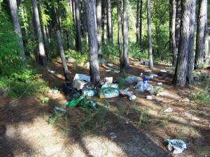 Trash left by recreational use of area of Pea Ridge Rd. near Weaver Creek cove
