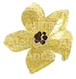 Flower_4.png