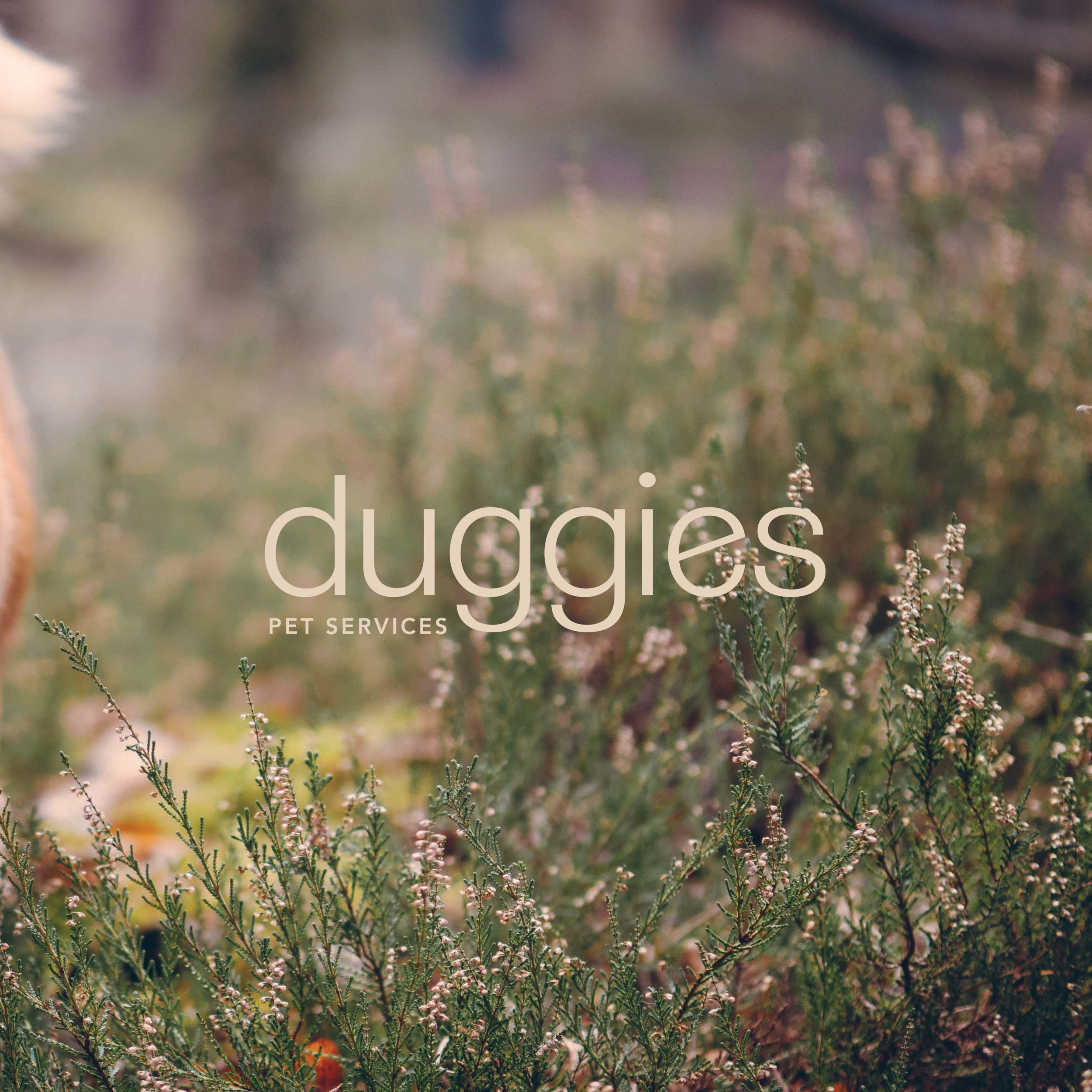 DUGGIES PET SERVICES