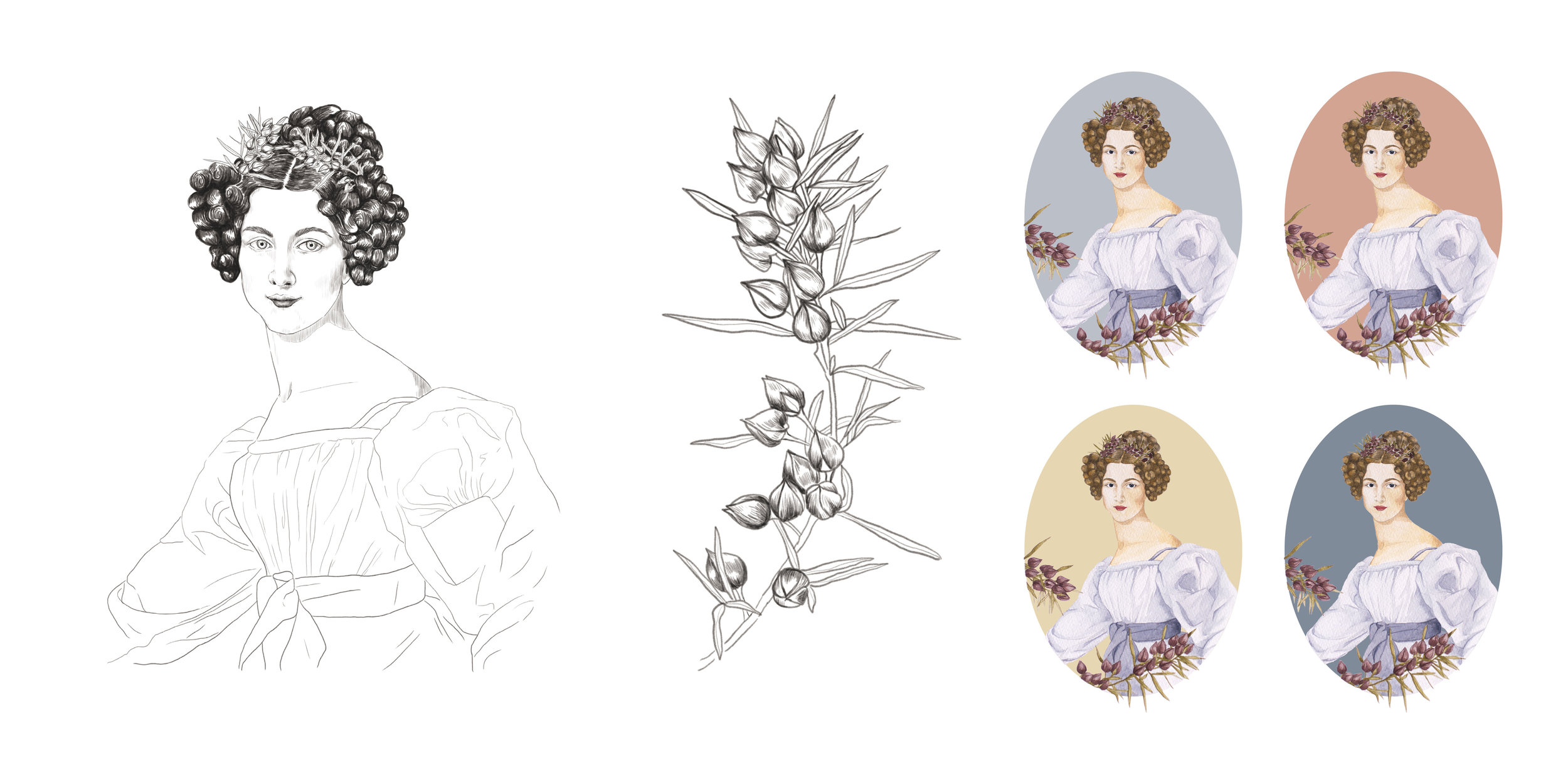 Illustration Projects.jpg