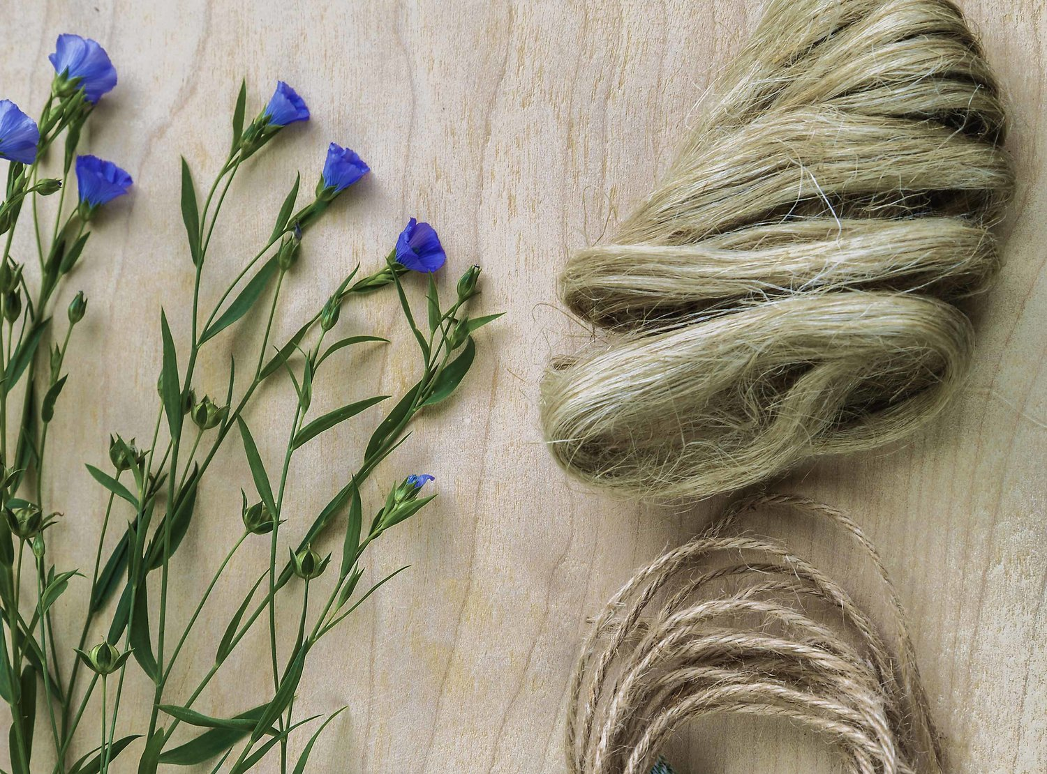 Stages of linen, from beautiful plant to fibre. Weirdly looks like hair…