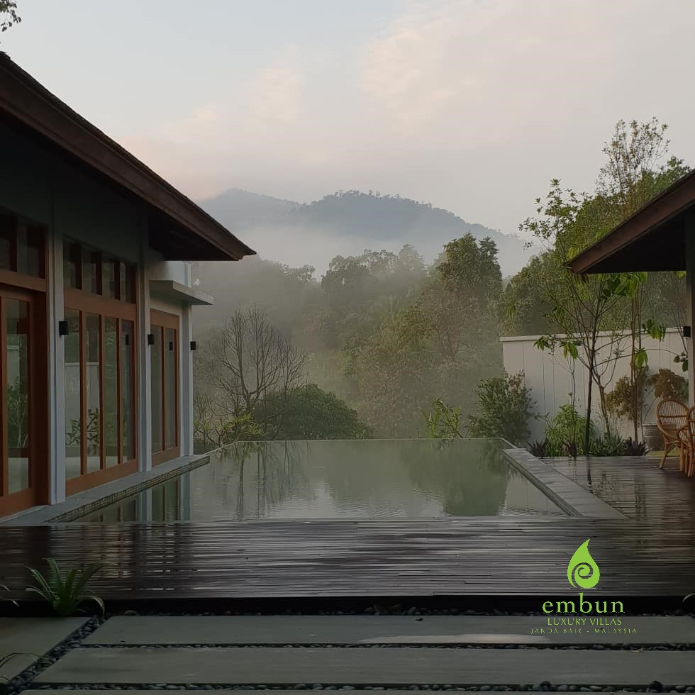 Clubhouse pool morning fog.jpg