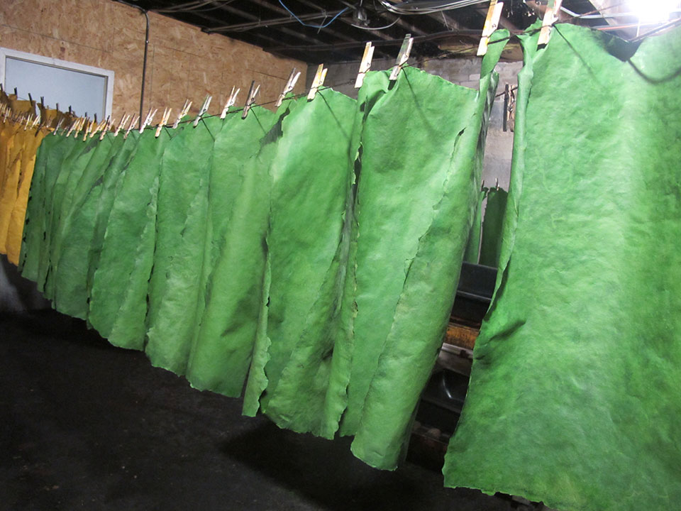 jewel-green-paper-on-clothesline.jpg