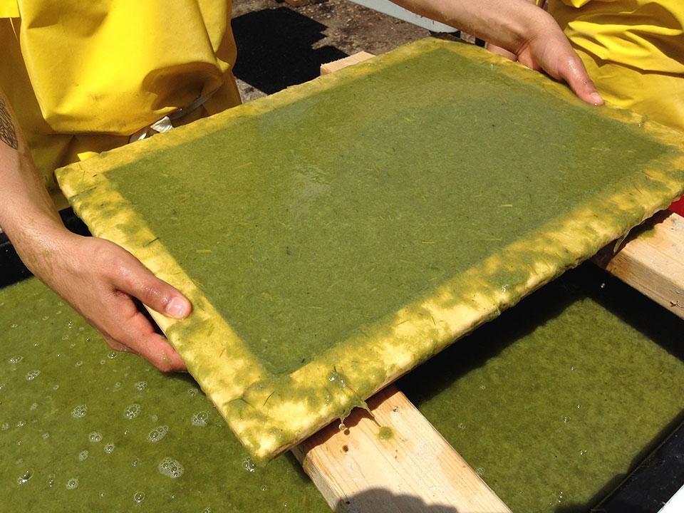 bio-and-textile-waste-pulp.jpg