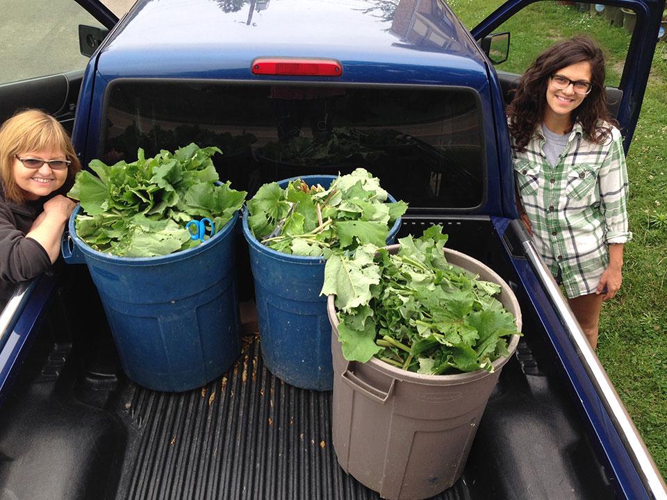 cleaning-neighborhood-weeds-biowaste-for-papermaking.jpg
