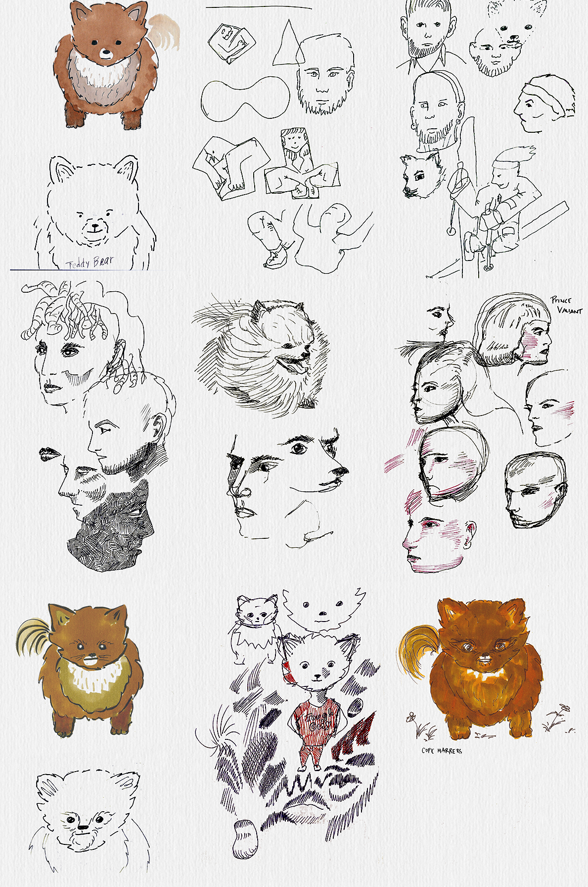 A selection of this week's sketches. I've been tinkering with Copic markers this week. Pomeranians are hard to draw — sometimes they end up looking like teddybears.