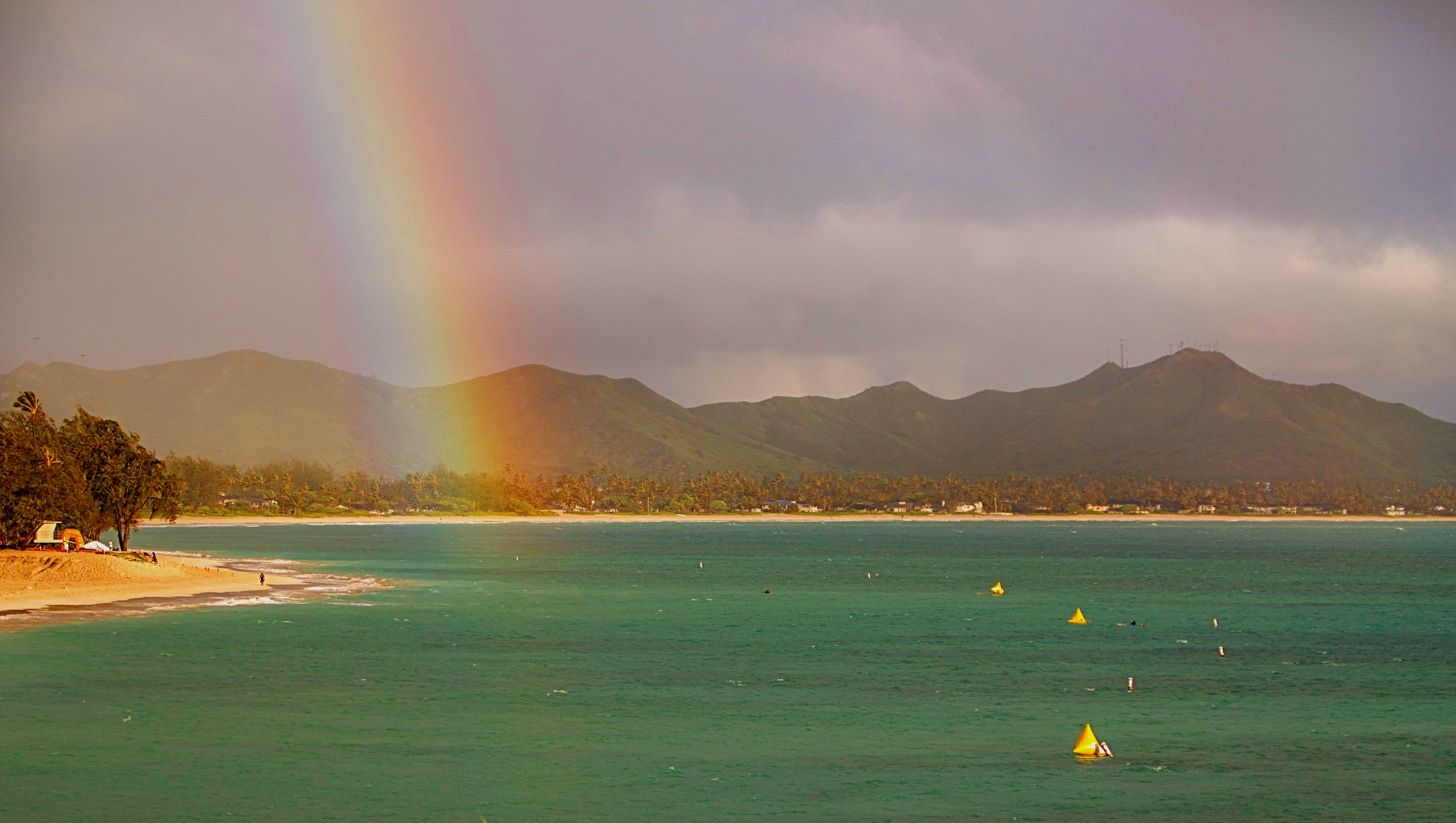 rainbow+swim+course01.jpg