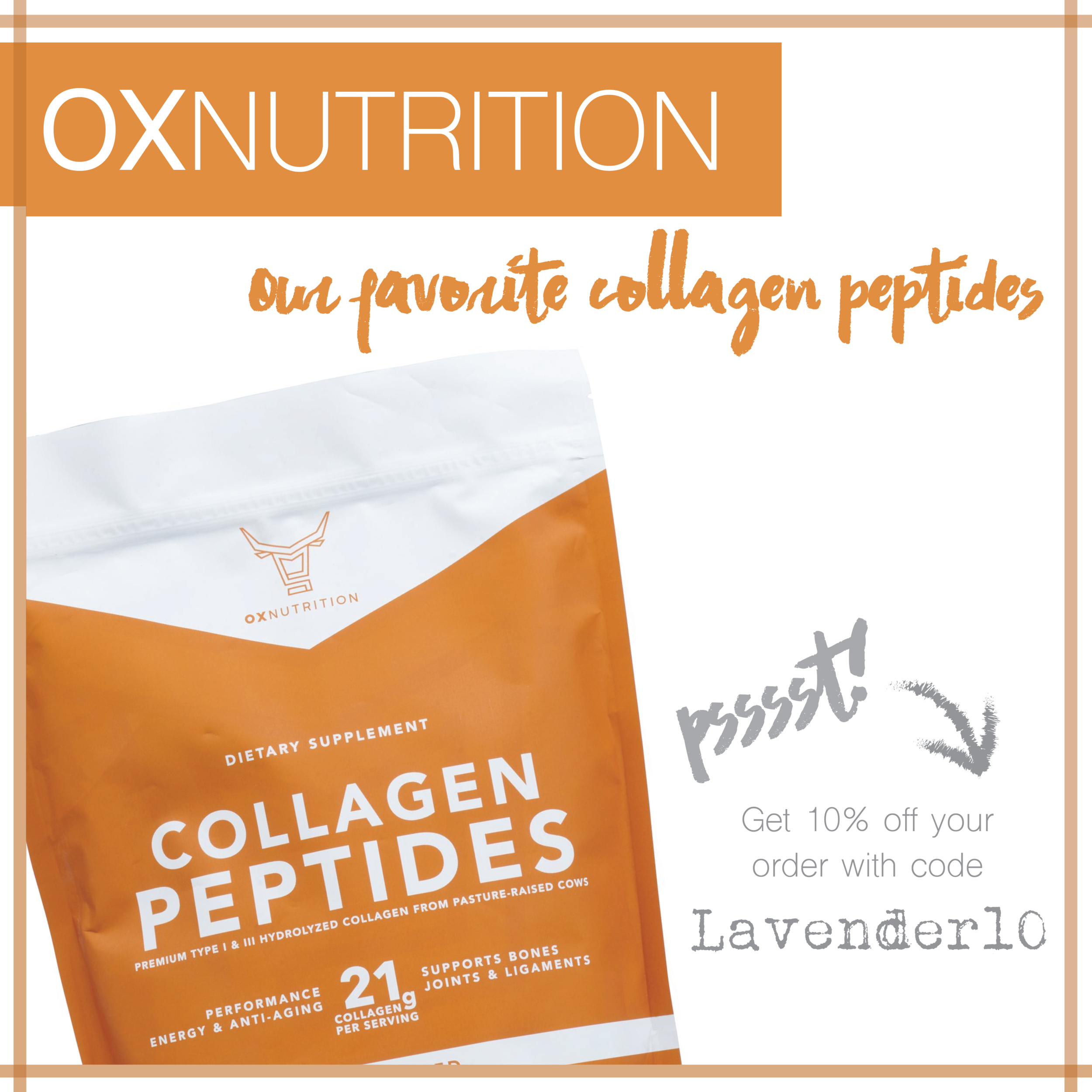 OxNutrition Ad Block-01.png