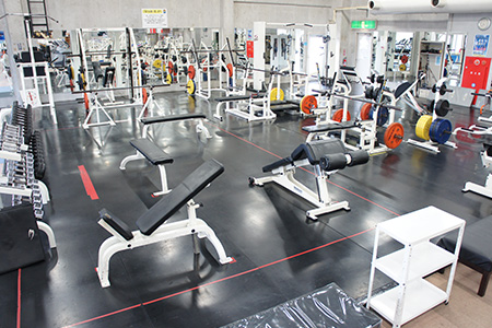 Sports Palace Xistus