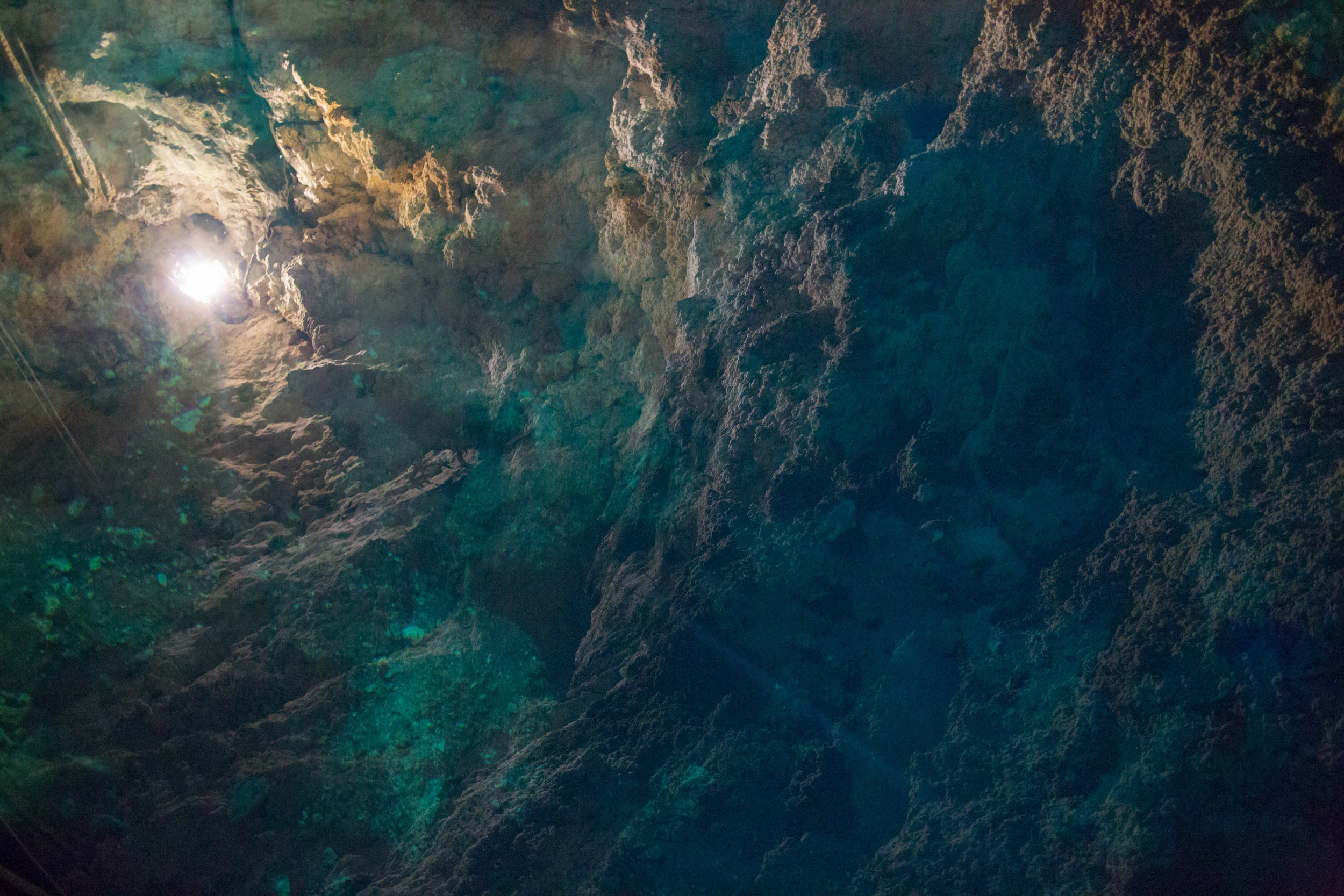 Cenote-333.jpg