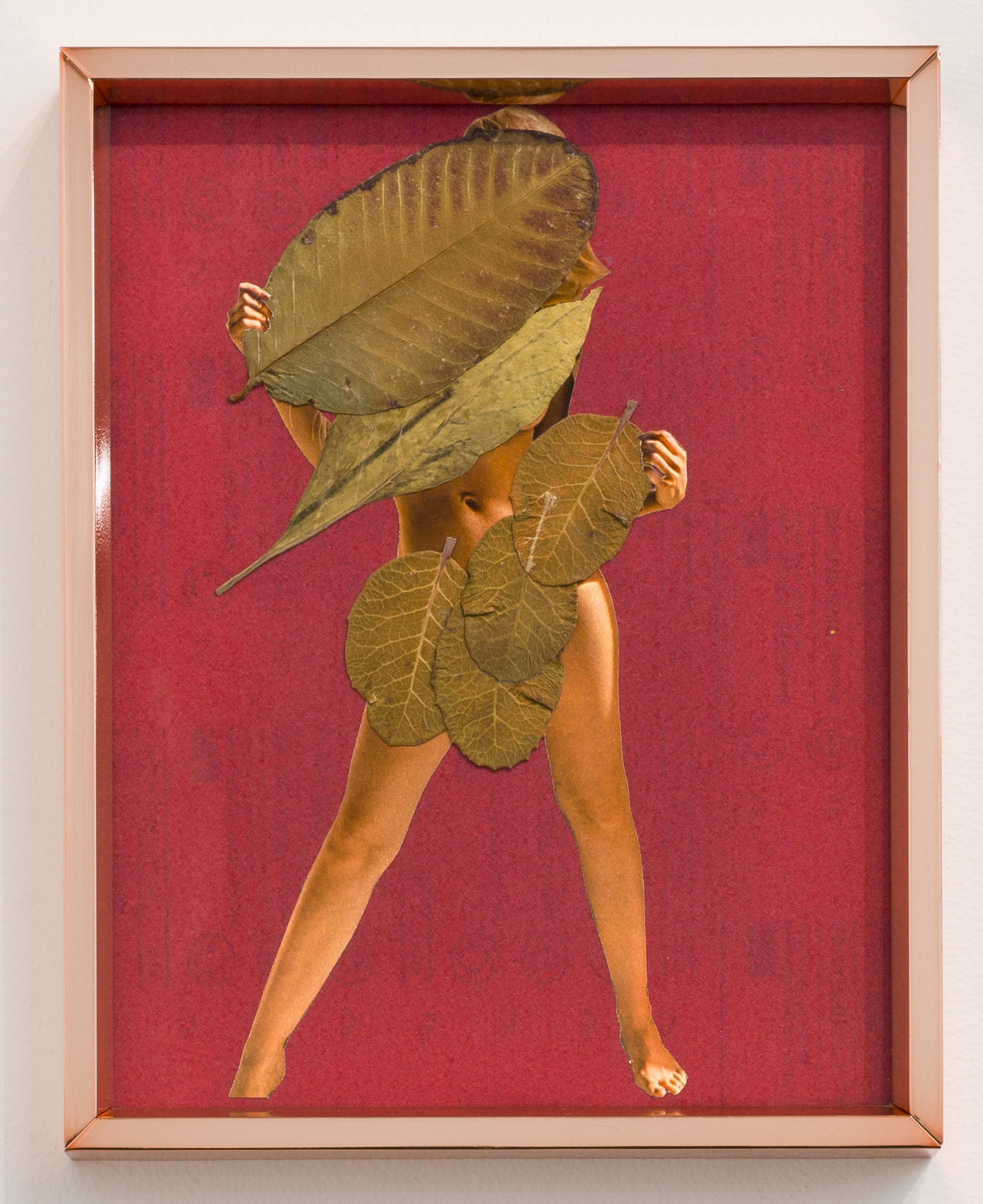 Karen Lofgren  Could You Name What Is To Cure? #4 , 2016 magazine image, guayaba leaf, and toe leaf on sandpaper in copper frame 10 3/4 x 8 1/2 in (27.3 x 21.6 cm)