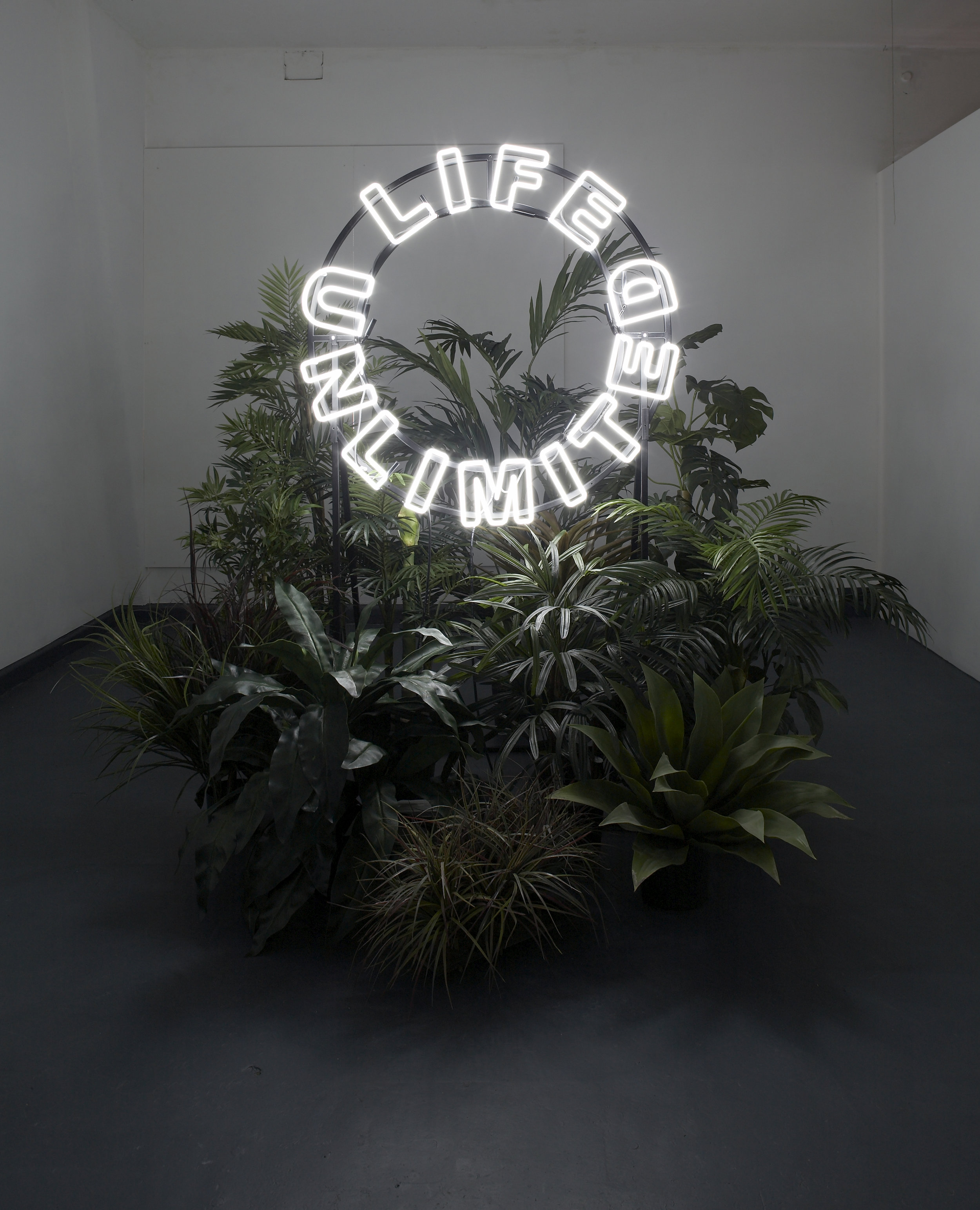 Kristin McIver  Divine Intervention , 2010 neon, steel, artificial plants approx. 78 x 78 in (198.1 x 198.1 cm)