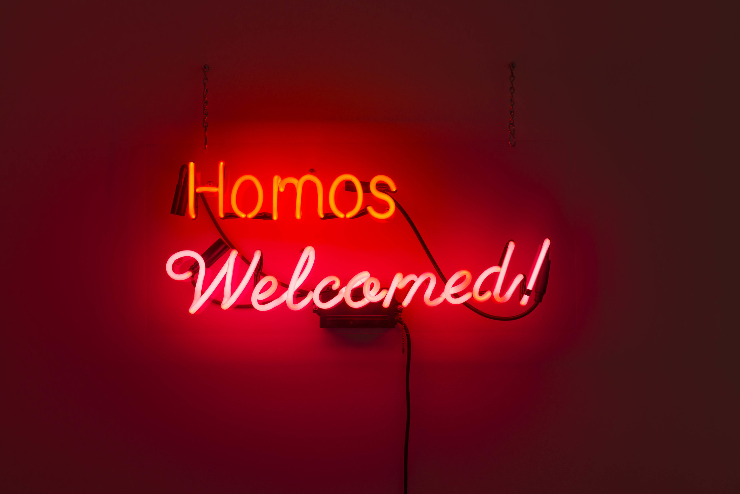 Alejandro Diaz  Homos Welcomed , 2009 neon on plexiglass 12 1/2 x 28 in (31.8 x 71.1 cm)