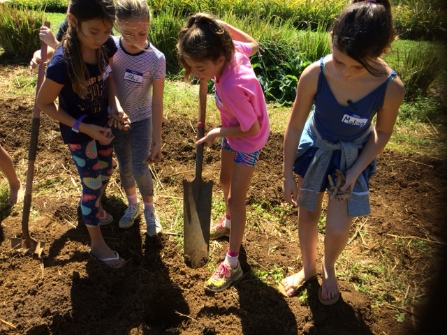 enrichment classes - The PTA supports the education of every child at Hanalei School by providing the financial support necessary to offer these essential classes: Art, Music, Science, Gardening, Physical Education and Drama.
