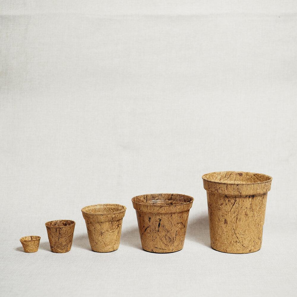 Biodegradable pots - Potta Planta