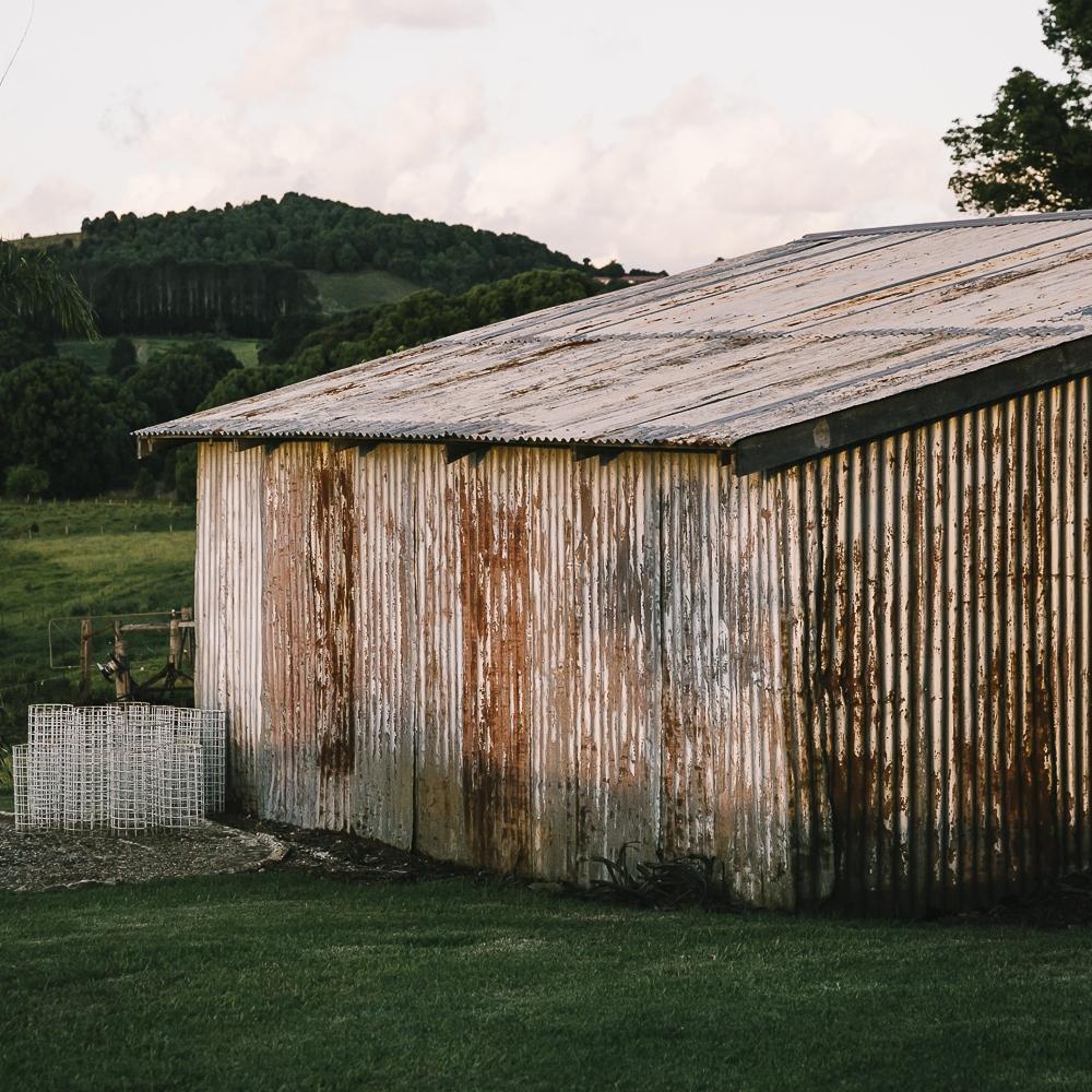 Frida's Field Farm Shed Byron Bay Hinterland