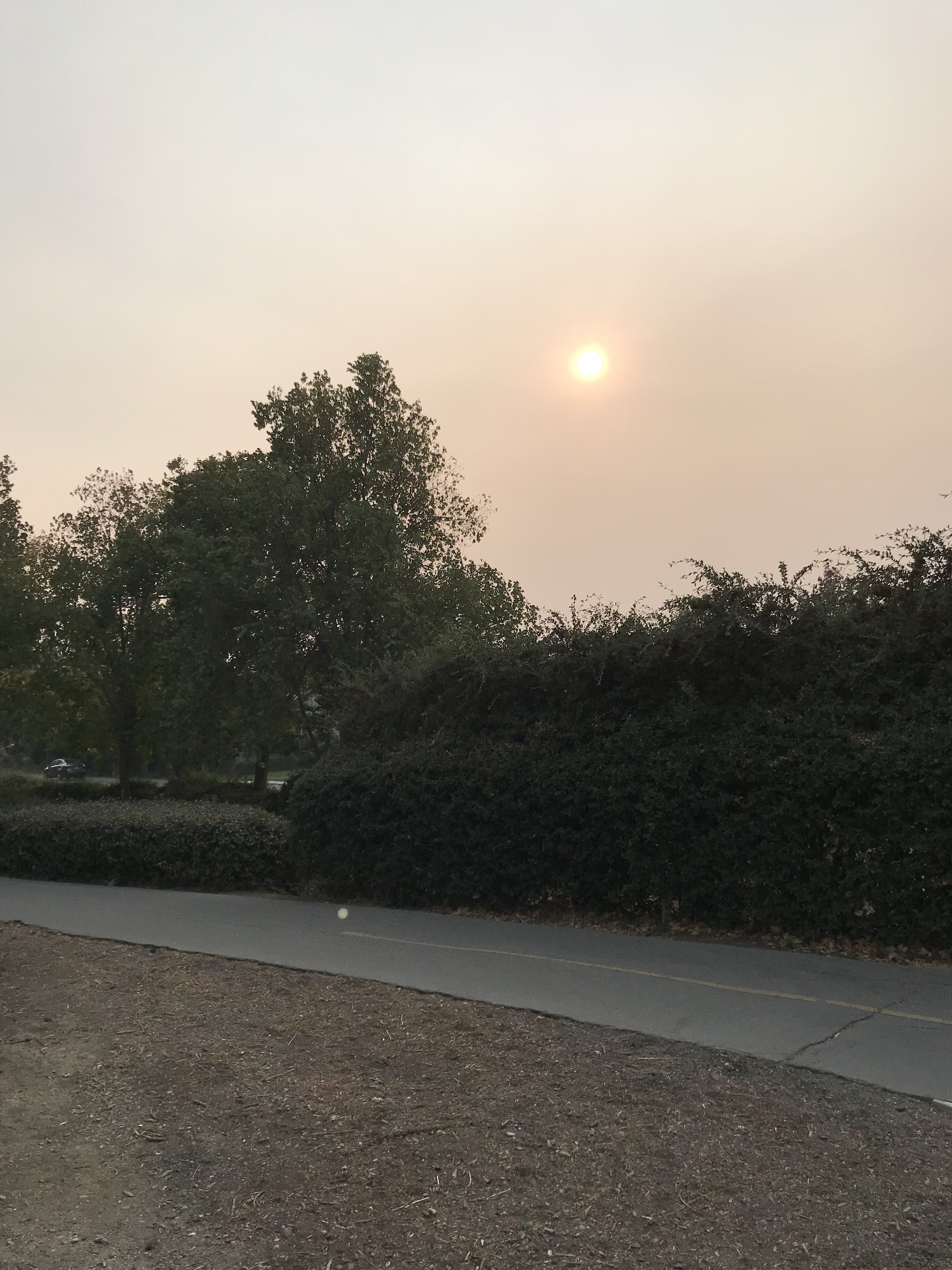 Hazy sun in Davis due to Camp Fire in Butte County. Photo by Iben Wilson