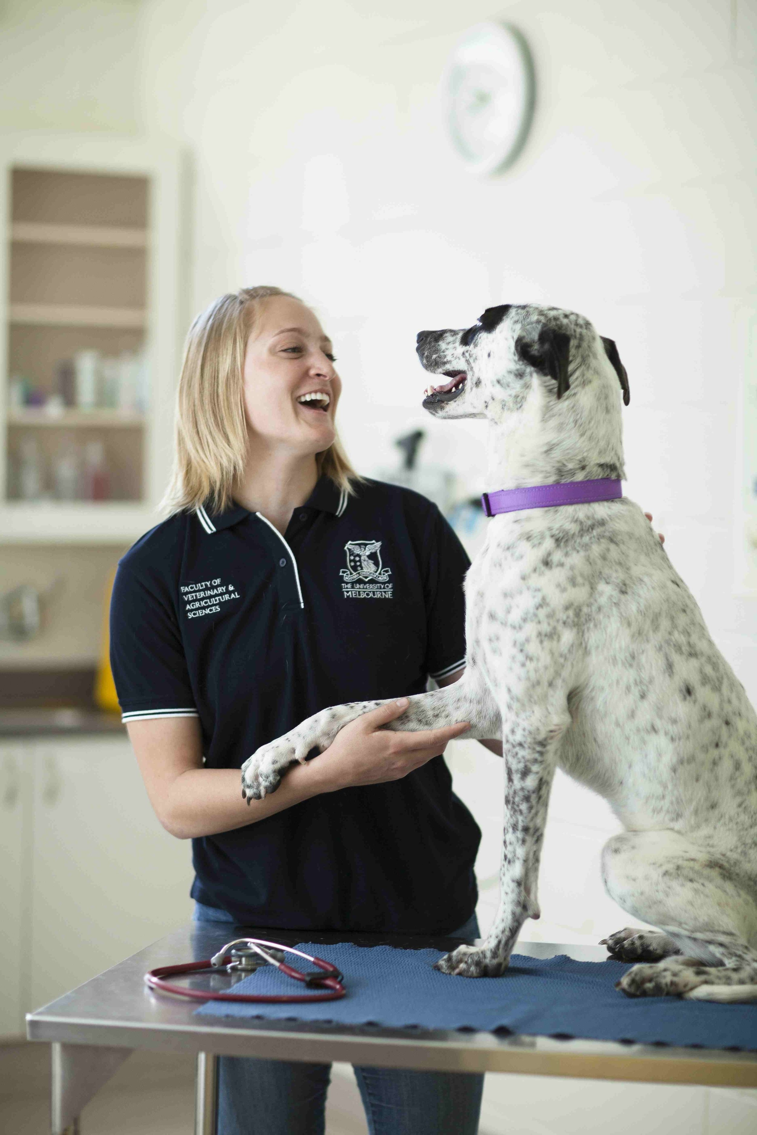 Melbourne university Veterinary Sciences