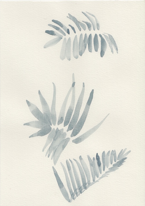 painted fern copy.jpg