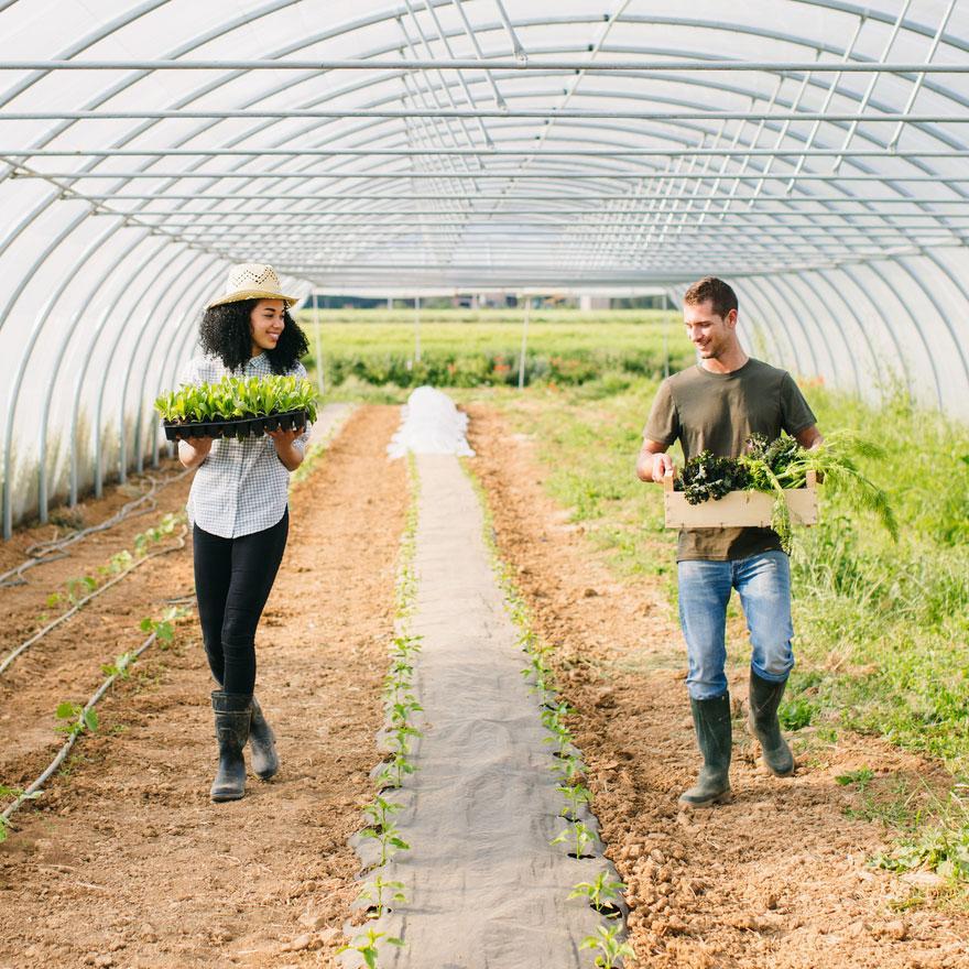farmer-couple-1.jpg
