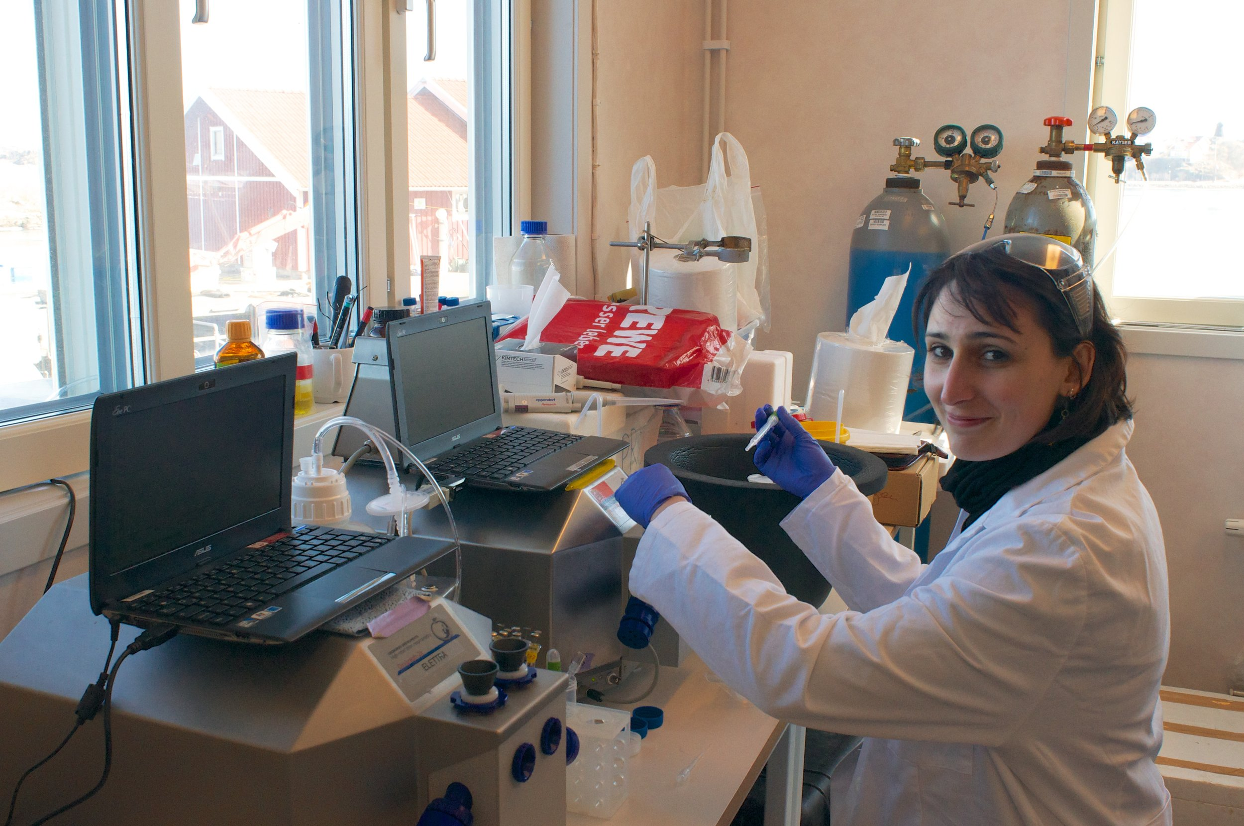 TO THE LABORATORY - Elettra tests the mitochondrial function of Atlantic cod with high-resolution respirometry. Photo: Elettra Leo