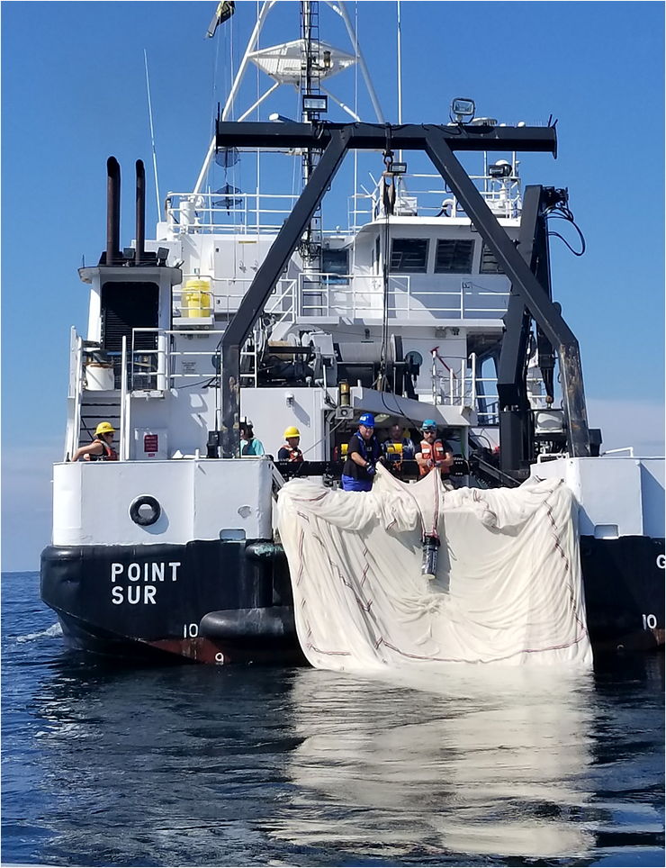 Pulling in a tow-net onto the RV Point Sur during a sampling trip. Photo: Dr Isabel Romero @isar0mer0