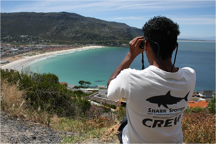 The view over Fish Hoek beach. Photo: @sharkspotters #BeSharkSmart