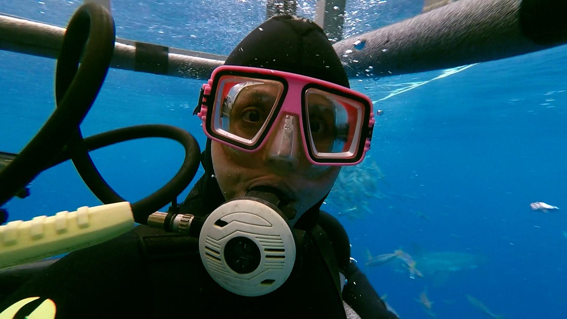 A shark cage selfie! Meet Apryl! Photo: @elportoshark