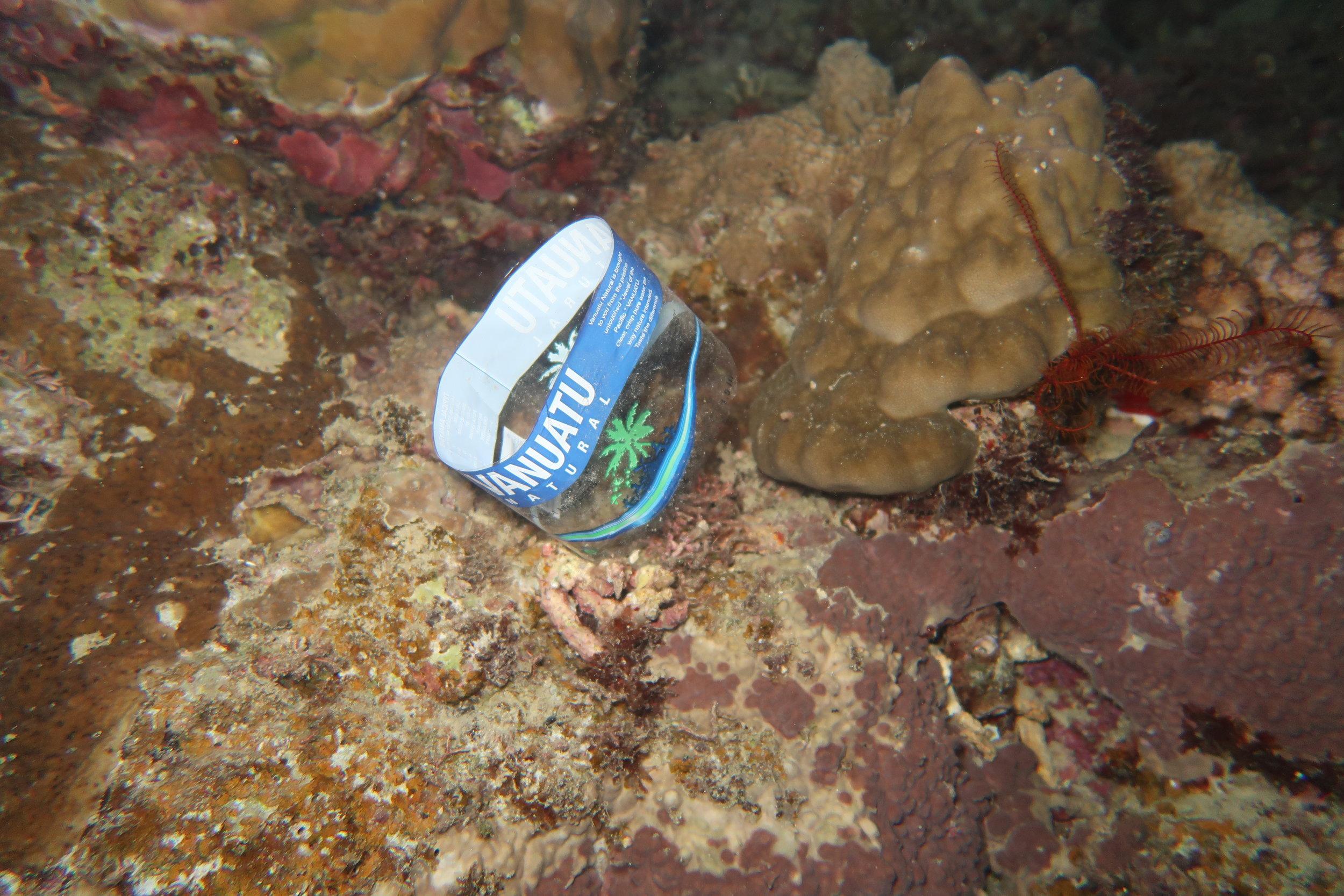 Plastic finds it way into all marine environments. Photo: Andy Osborne @osbornandy