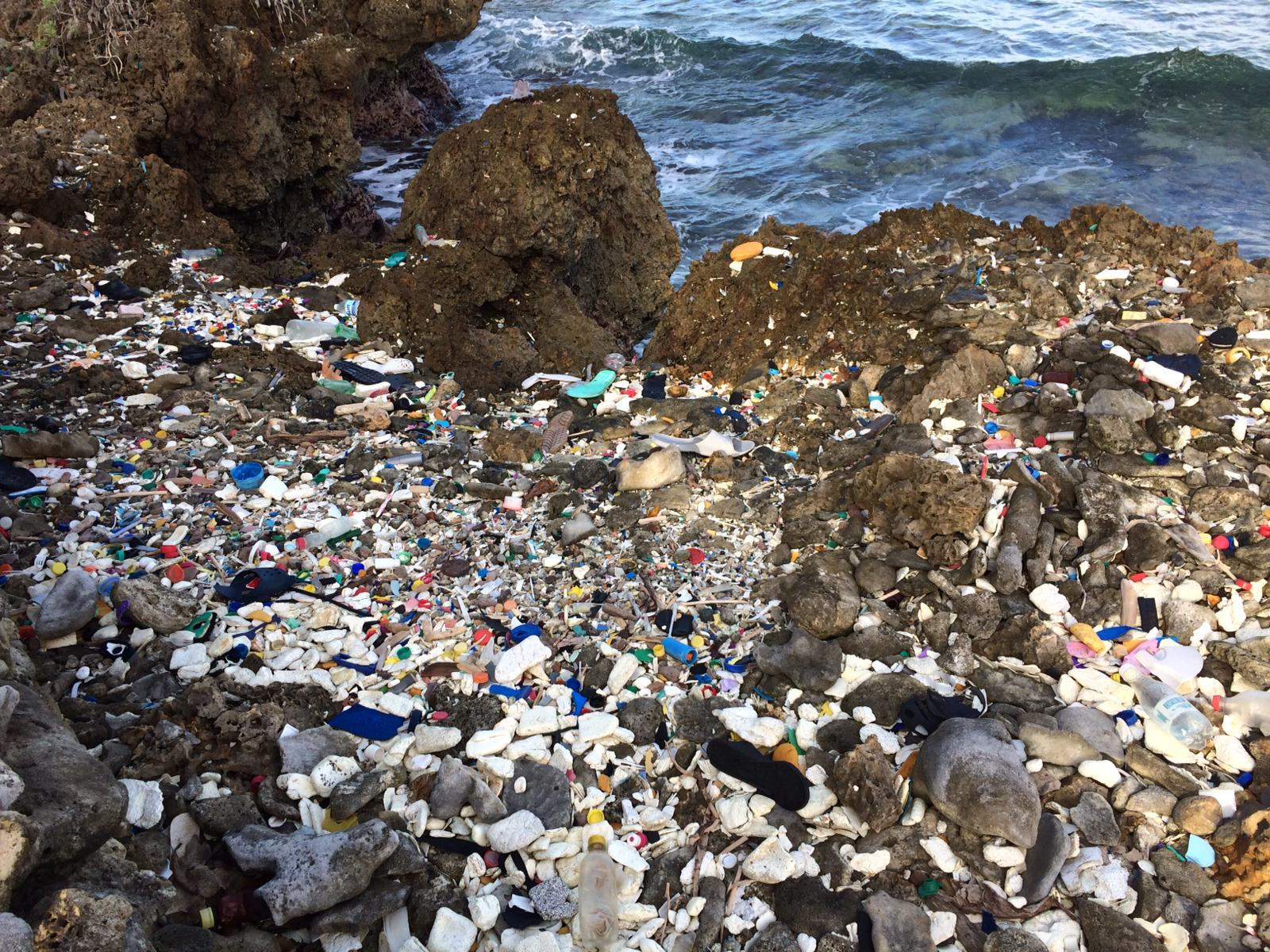 The Plastic Tide drones would be able to identify areas of high plastic pollution, such as this beach, using AI technology. Photo: Millie Rose