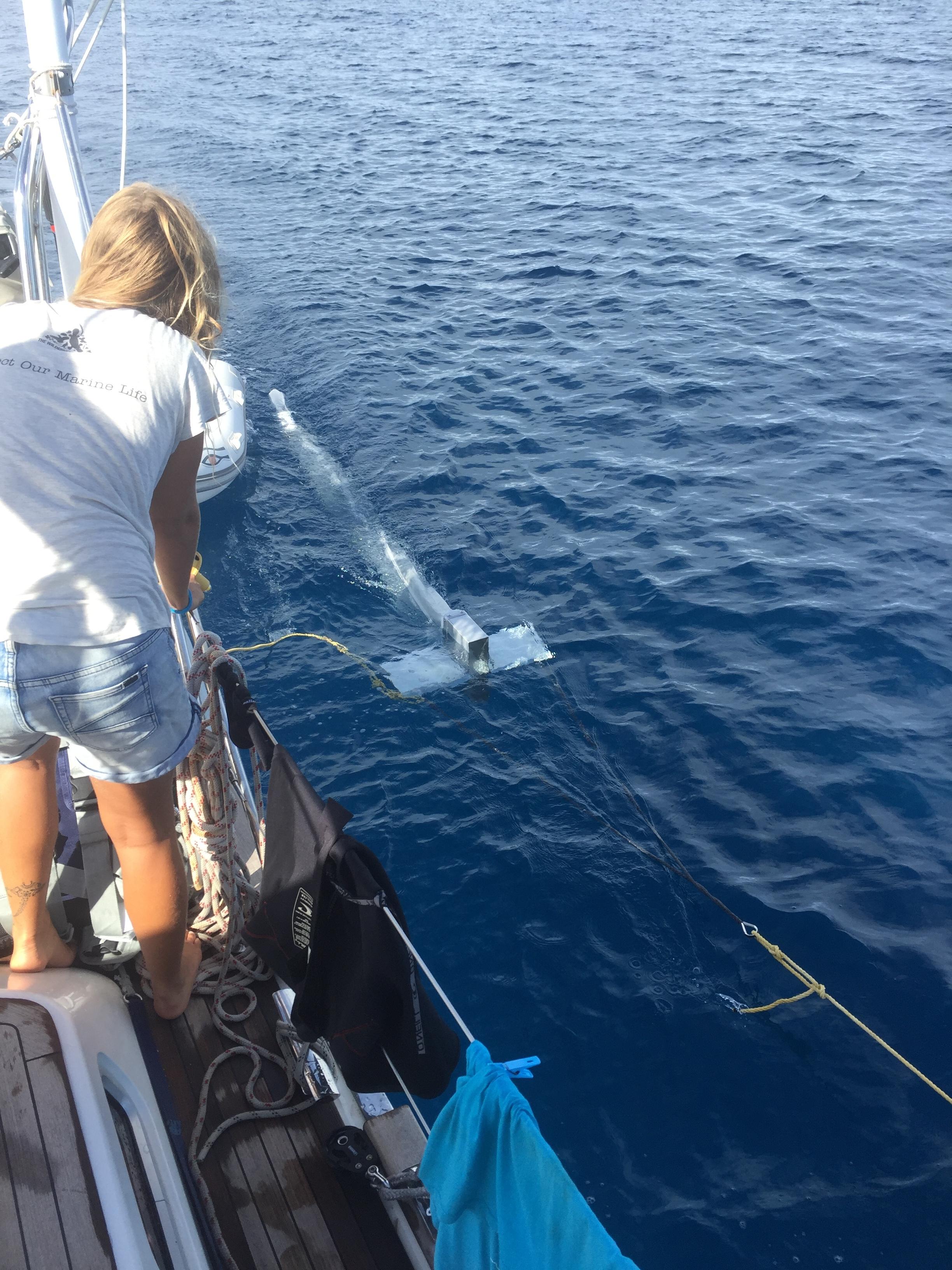 Avani Trawl in action - Polynesia.JPG