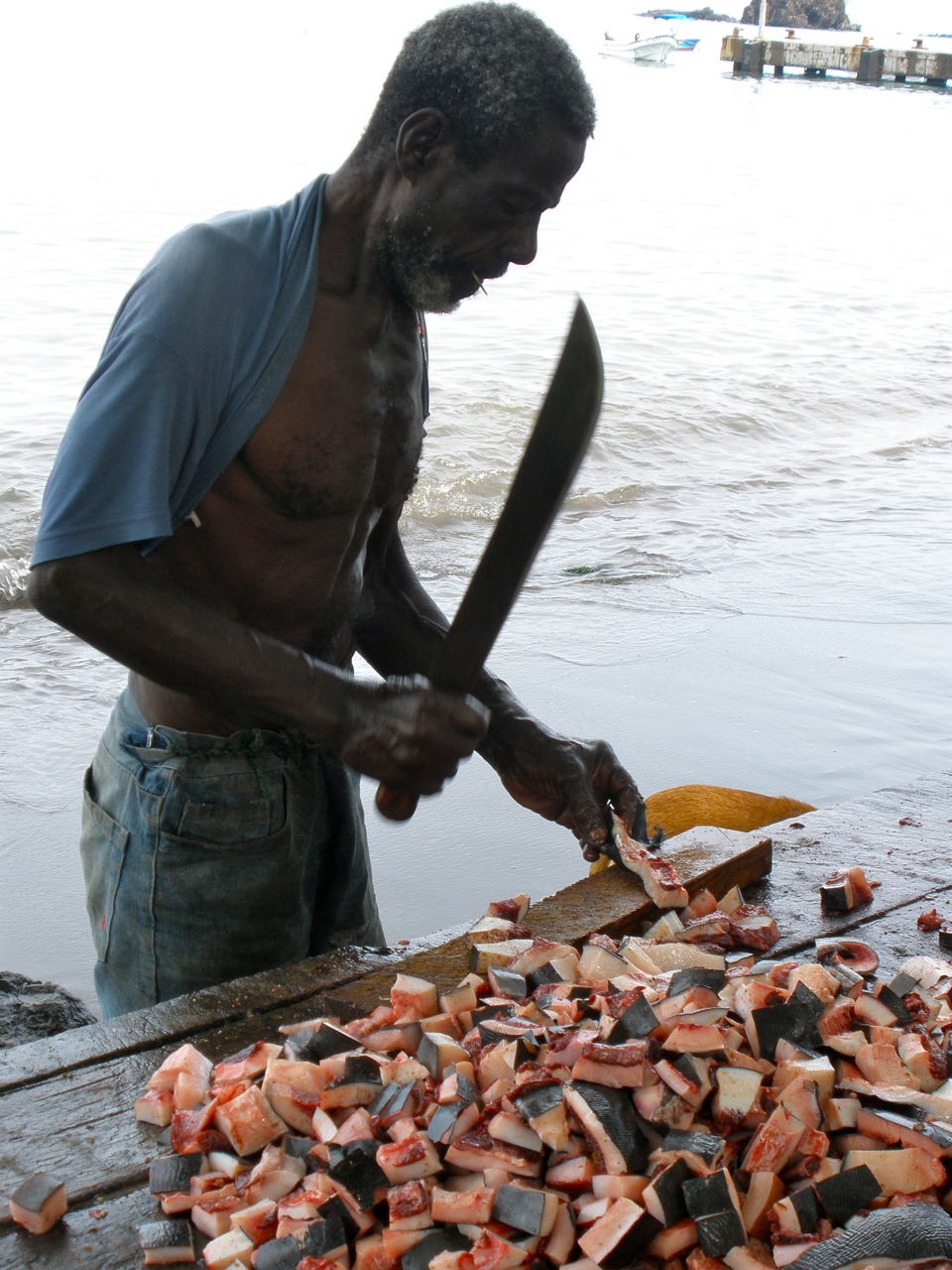 Whalers in the Caribbean preparing whale meat. Photo: Russell Fielding