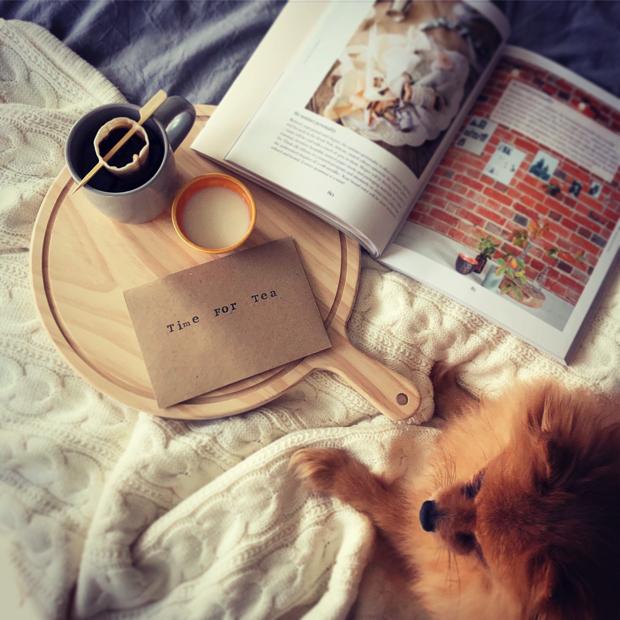 Reusable tea bags, featuring Cotton Lily's name sake. Photo: Katie Wales