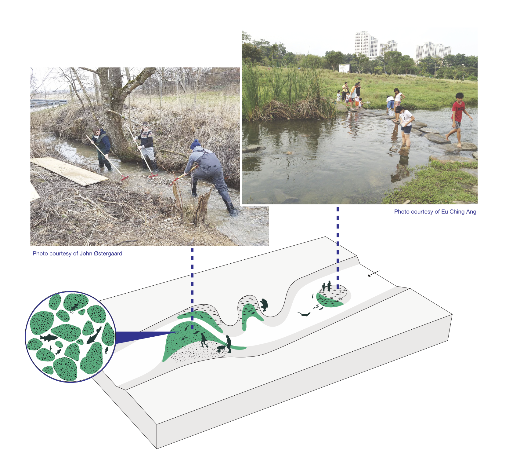 Figure 1. This application of participatory mapping essentially blends human and biodiversity interactions within the waterway. The graphic is copyright of the author.