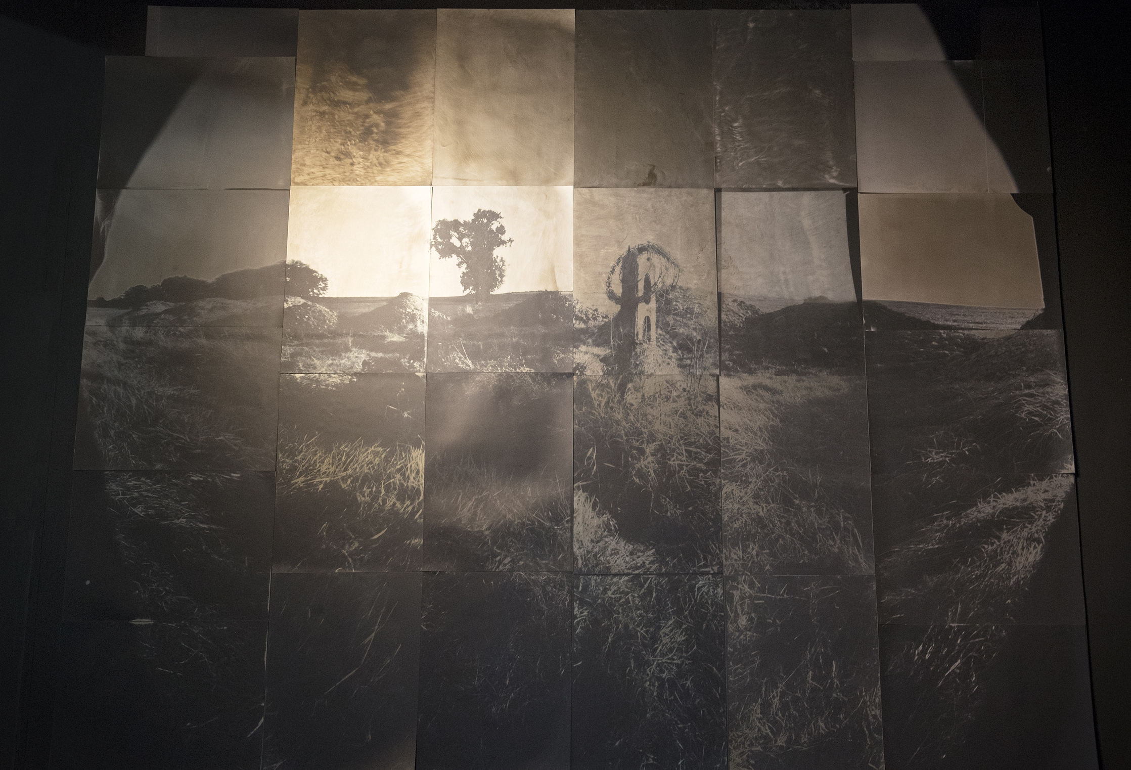 Camera Obscura Image, simultaneously captured onto 28 sheets of Medical X-ray film. Silver Gelatin Chromo contact Prints,