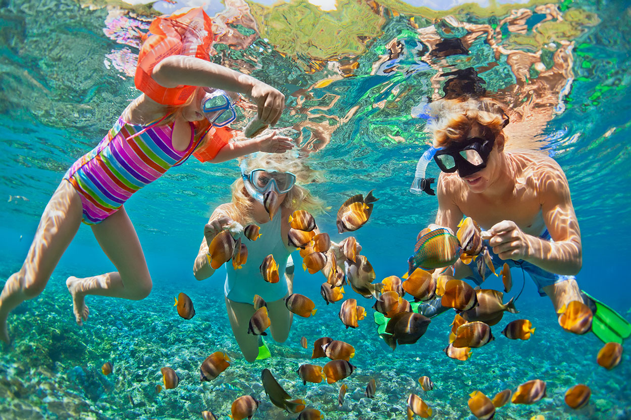 snorkeling-istock.jpg
