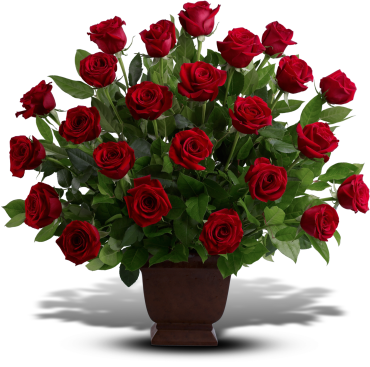 Rose Tribute    An elegant expression of sympathy and love, this eye-catching arrangement presents two dozen red roses in an exclusive Noble Heritage urn. A traditional funeral flower choice, featuring two dozen red roses in a Noble Heritage urn.    Buy Now>>