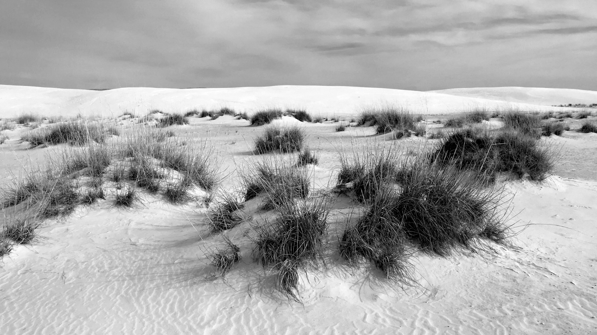 That Day at White Sands