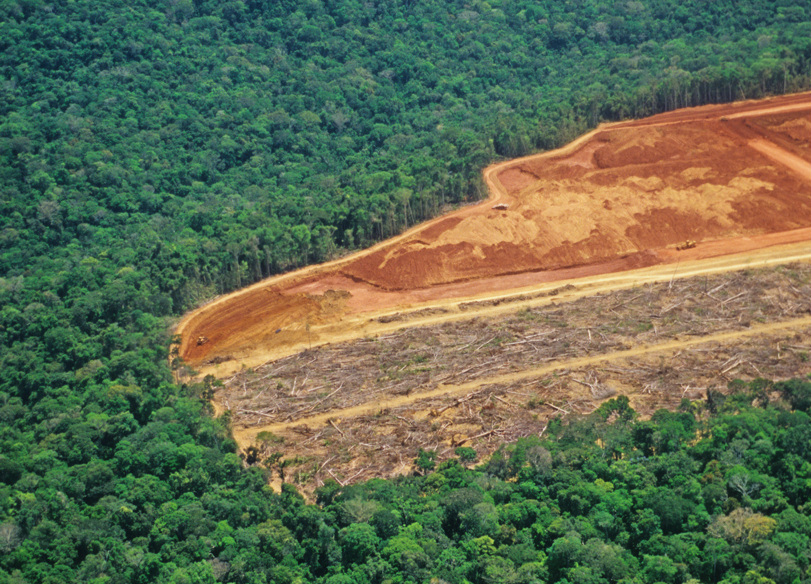 Amazon deforestation happens in remote areas where people are not usually exposed to it, contributing to the normalized perception that causes the shifting baseline. Photo credit: Conservation International