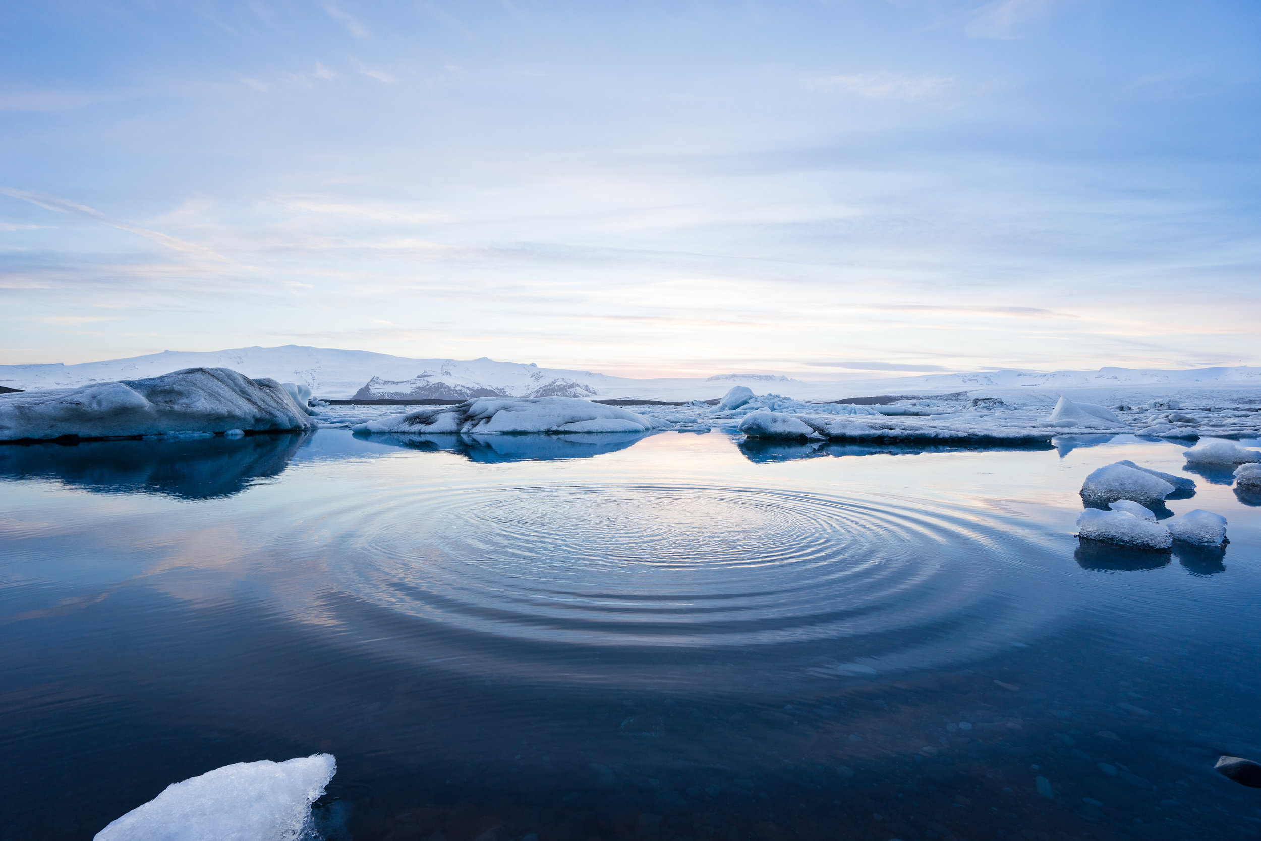 Arctic ice has reached record lows in recent years, and scientists believe we could see an ice-free arctic by 2050. Photo credit: Jeremy Goldberg