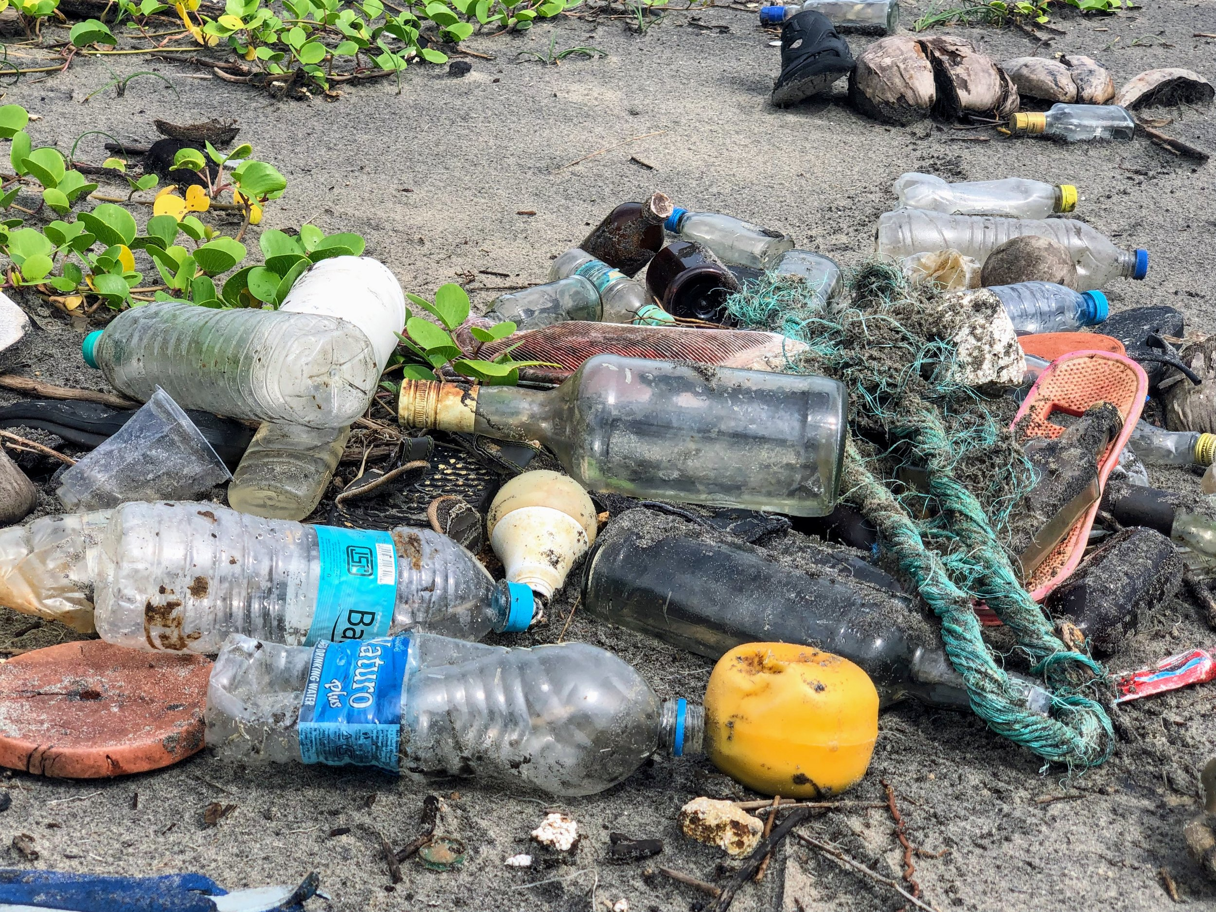 Plastic is without a doubt our most permanent impact on the world around us. The transition to bioplastics might not remove already existing plastics, but it would slow the rate of pollution, which is a start. Photo credit: John Cameron