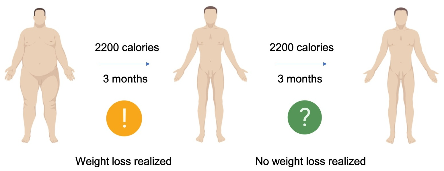 Often, people diet, lose weight, but then weight loss stalls, even though they're eating the same amount of calories. How is this possible? It's not magic, it's science! The metabolism works in interesting ways. Keep reading and look for the second installment of this figure to find out how!