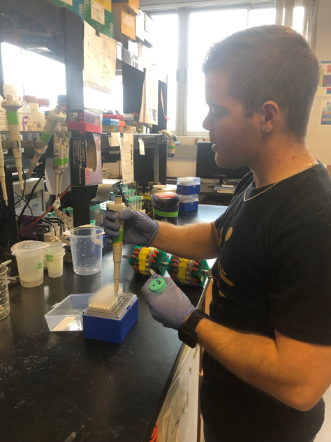 The author, Jason Baer, hard at work extracting DNA.