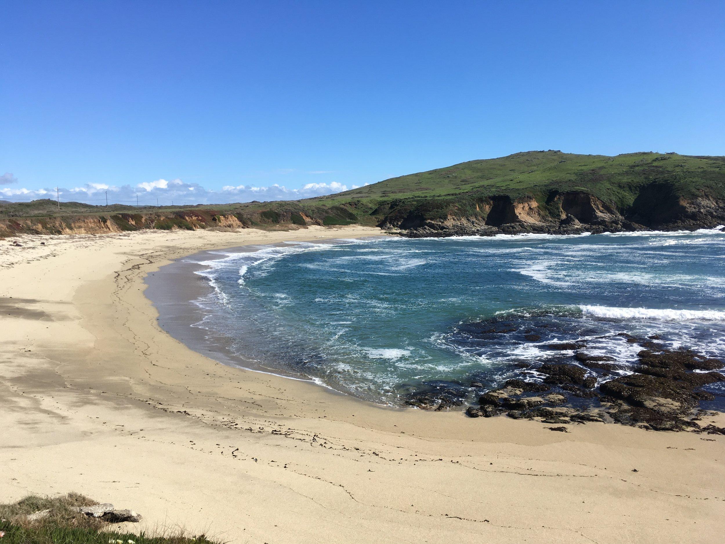 Bodega Marine Reserve. Photo credit: Lais Lima