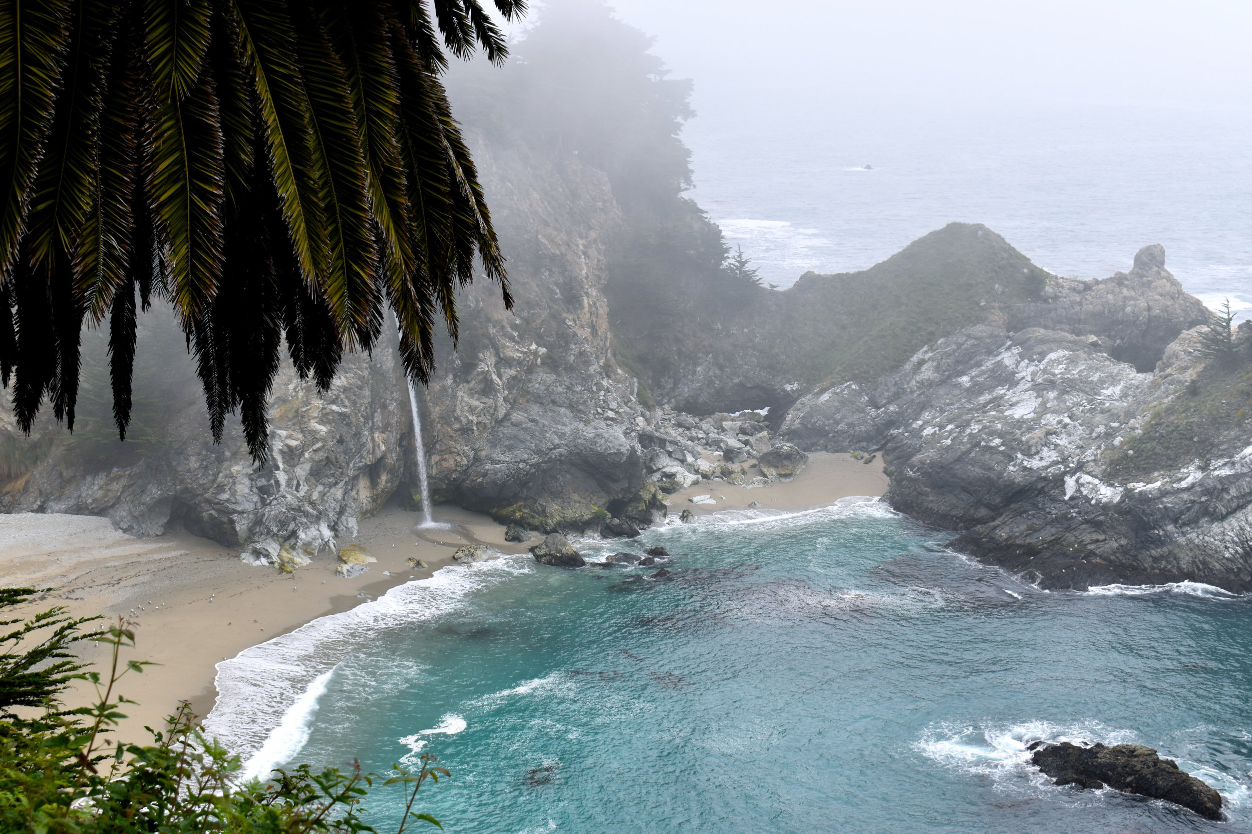 Photos taken in Big Sur, California, by the author.